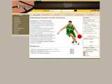 internetinis krepšinio žaidimas